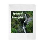 spiritual-principles Twin Duvet Cover