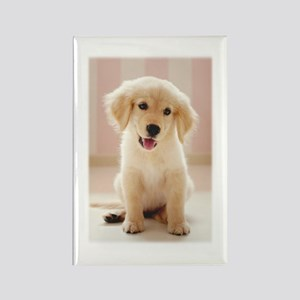 Golden Retriever Pup Rectangle Magnet