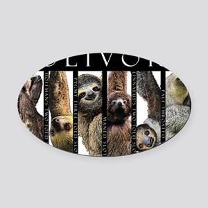 Sloths of the World Oval Car Magnet