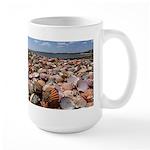 Scallop Shell Rainbow Mugs