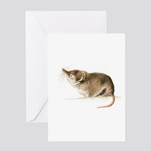 Shrew Greeting Cards