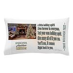 Believer Test Pillow Case