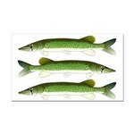 Chain Pickerel Rectangle Car Magnet