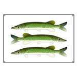 Chain Pickerel Banner