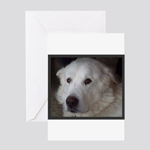 Beautiful Great Pyrenees Greeting Cards