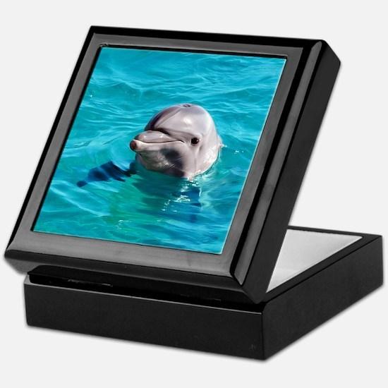 Dolphin Blue Water Keepsake Box