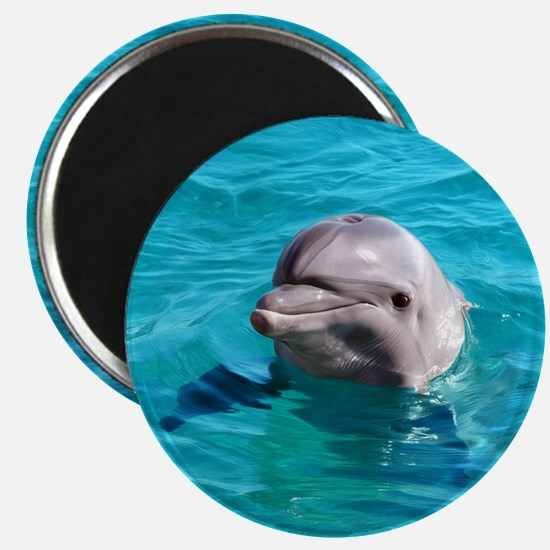 Dolphin Blue Water Magnets