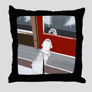 doorNW Throw Pillow