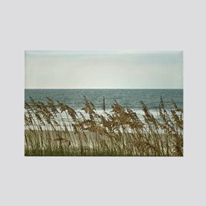 Dunes at the Beach with Sea Oats Magnets
