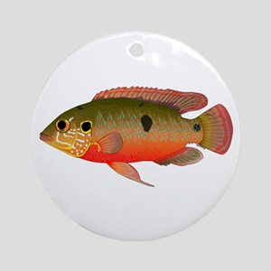 African Jewelfish Round Ornament