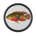 African Jewelfish Large Wall Clock