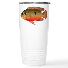 African Jewelfish Travel Mug