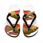 African Jewelfish Flip Flops