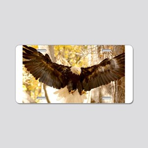 Bald Eagle in Flight Aluminum License Plate