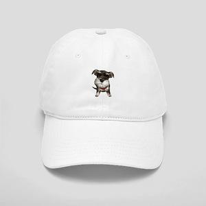 Mini Schnauzer001 Baseball Cap