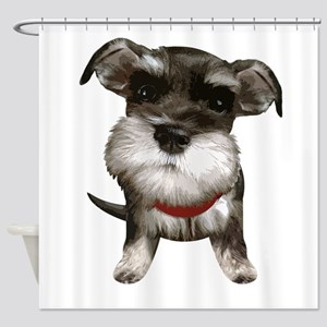Mini Schnauzer001 Shower Curtain