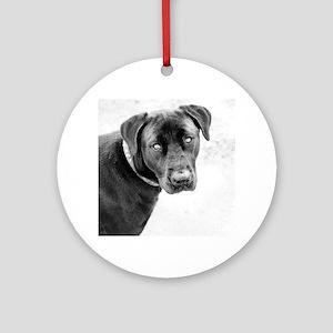 Dog Round Ornament