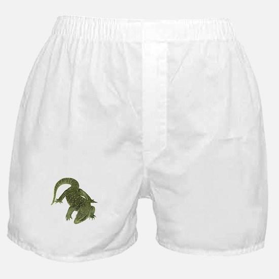TRACKING Boxer Shorts