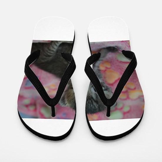 Luna Flip Flops