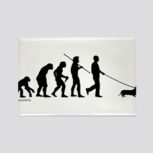 Dachshund Evolution Magnets