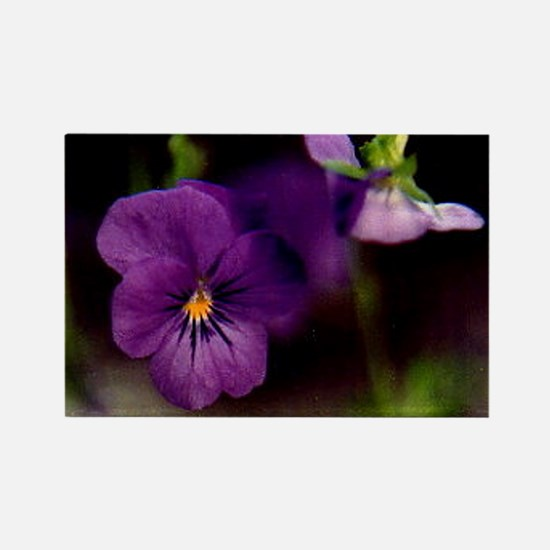 Expressively You! Purple Daze Rectangle Magnet