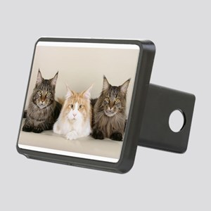 maine coon group Hitch Cover