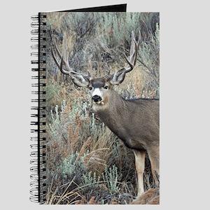 Utah mule deer buck Journal