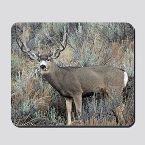 Utah mule deer buck Mousepad