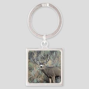 Utah mule deer buck Square Keychain