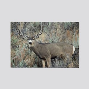 Utah mule deer buck Rectangle Magnet
