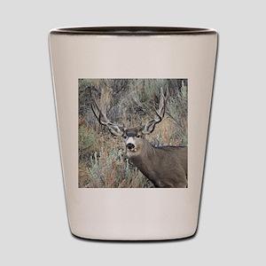 Utah mule deer buck Shot Glass
