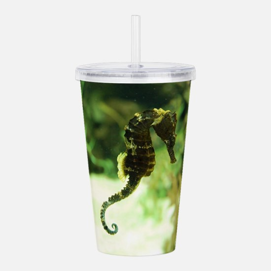 Tropical Seahorse with Acrylic Double-wall Tumbler
