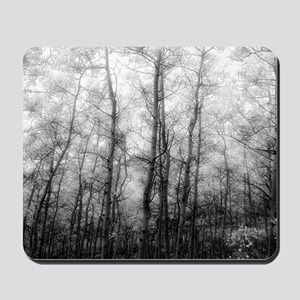 Black and White Aspens Mousepad
