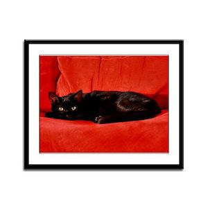 Black Cat Framed Panel Print