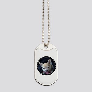 Personalized Pet Dog Tags