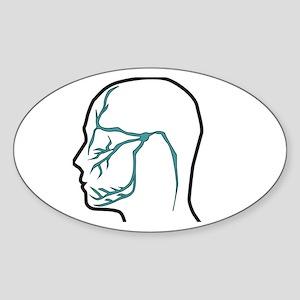 Trigeminal Neuralgia Nerve Distribution Sticker