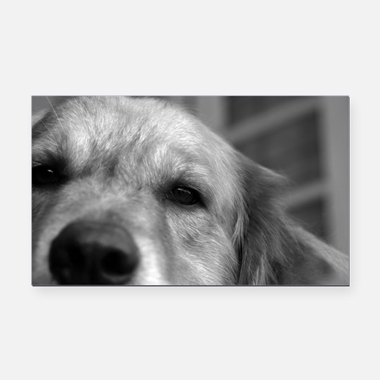 Unique Peace%2c love%2c golden retriever Rectangle Car Magnet