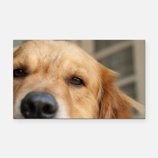 Cute Peace%2c love%2c golden retriever Rectangle Car Magnet