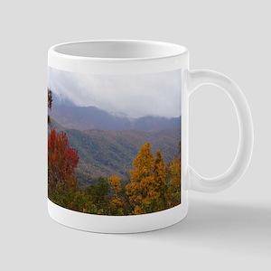 Fall Colors Mug