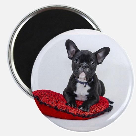 Cute Dog on Heart Cushion Magnets