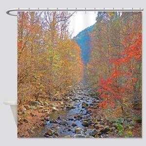 Woodland Stream In Autumn Shower Curtain