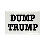 Dump Trump Liberal Poli Rectangle Magnet Magnets