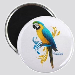 Blue and Gold Macaw Magnets