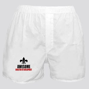 Awesome Director of development Boxer Shorts