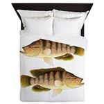 Thinface Cichlid Queen Duvet
