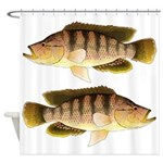 Thinface Cichlid Shower Curtain