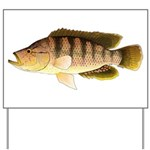 Thinface Cichlid Yard Sign