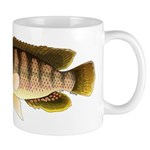 Thinface Cichlid Mugs