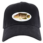 Thinface Cichlid Baseball Hat