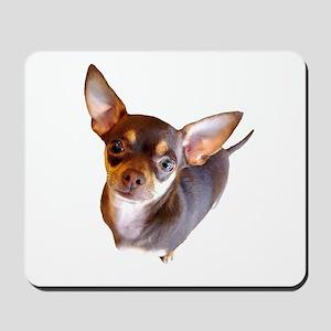 Chihuahua Chocolate Mousepad